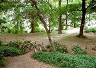Liffey-reserve