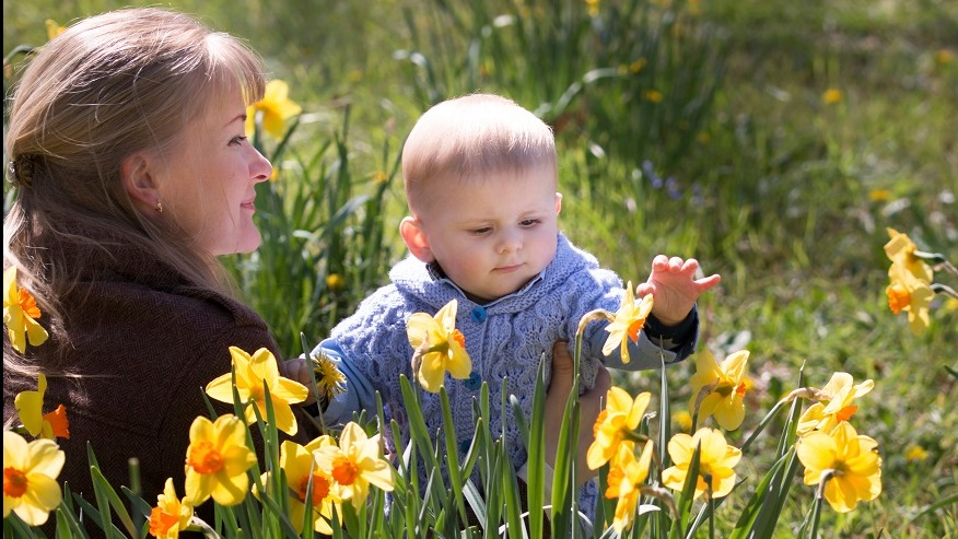 A mother and baby play in a field of daffodils