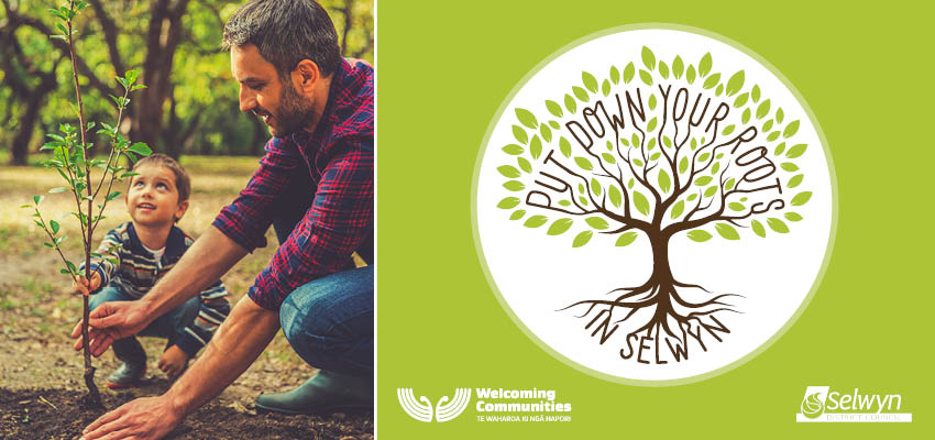 Poster image with young man planting a tree and a logo of a hand drawn tree with the words put down your roots in Selwyn