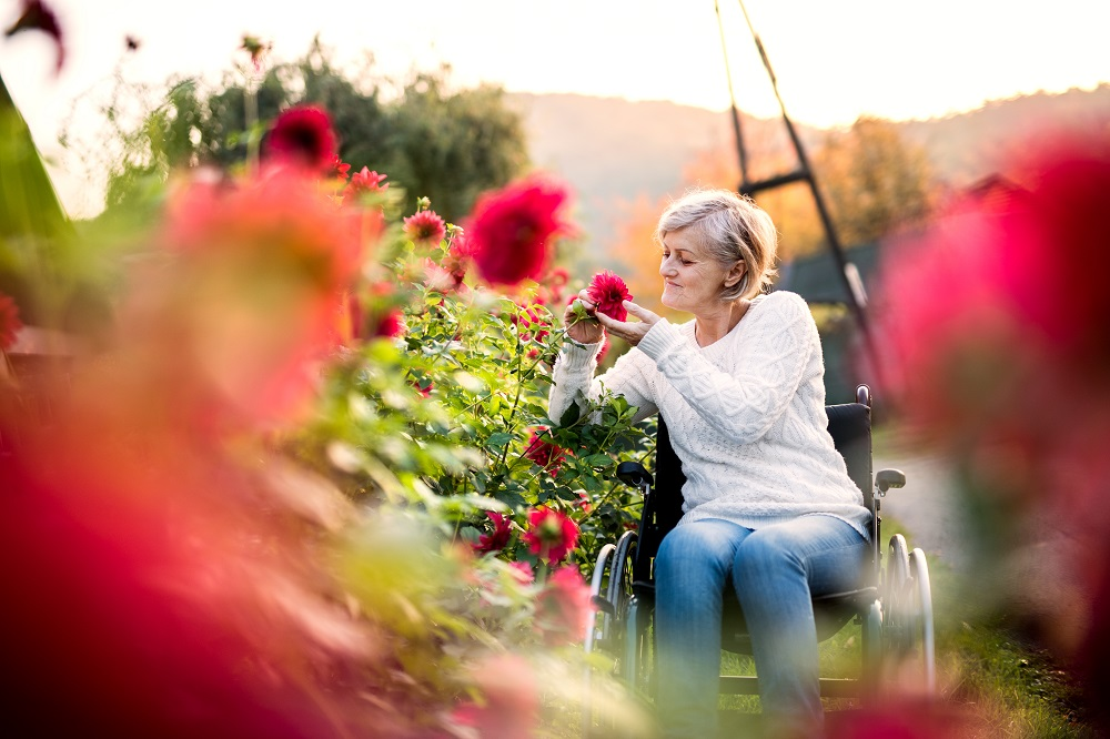 A woman in a wheelchair smelling flowers from a raised flower bed
