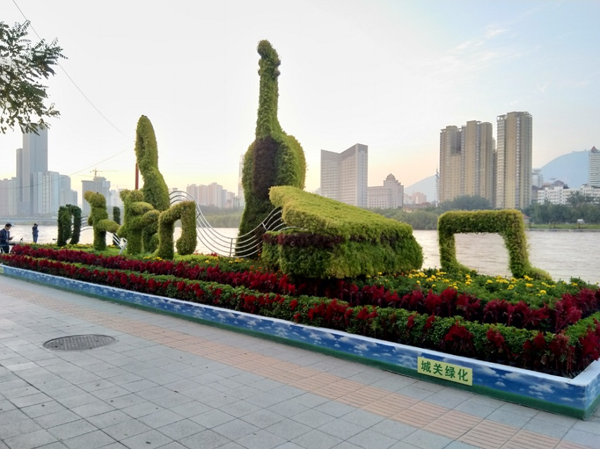 Topiary hedge display in the shape of musical instruments next to the Yellow River