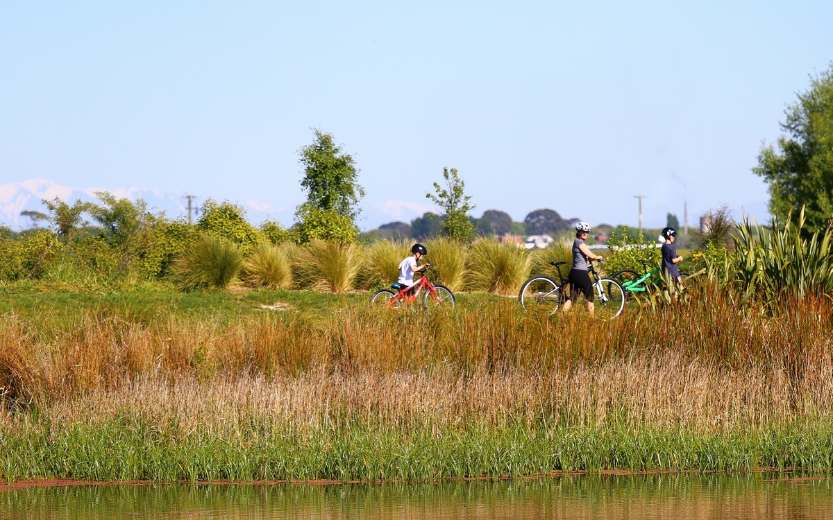 wetland area with cyclists
