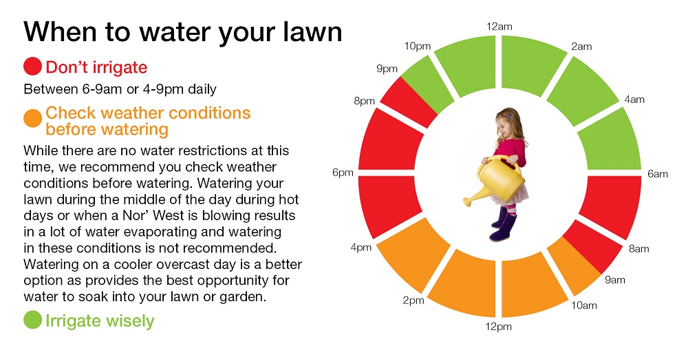 When to water your lawn infographic.