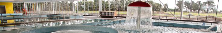 Pool and mushroom