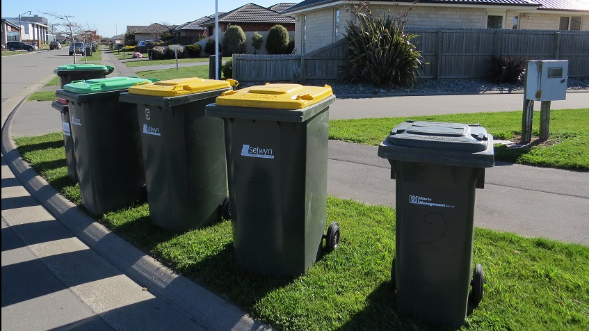 A line of green and yellow lidded rubbish bins sit in the sunshine on a berm on an urban street